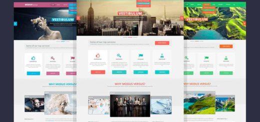 Купить готовый шаблон сайта на html, wordpress, joomla